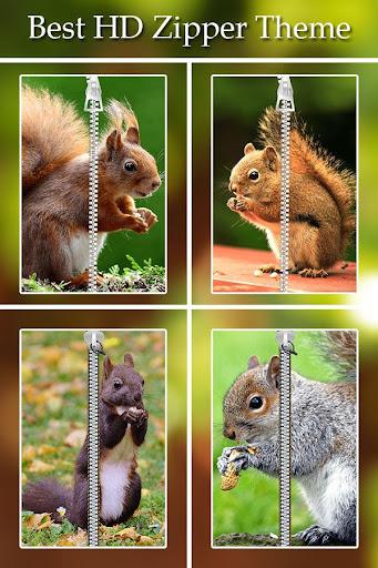 Squirrel Zipper Lock