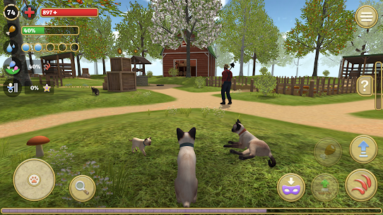 Cat Simulator 2020 Mod Apk Download For Android and Iphone 6