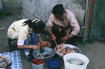 Photo: 03187 ブルド/ハスバータルイ家/料理のため、羊内臓をきれいにする