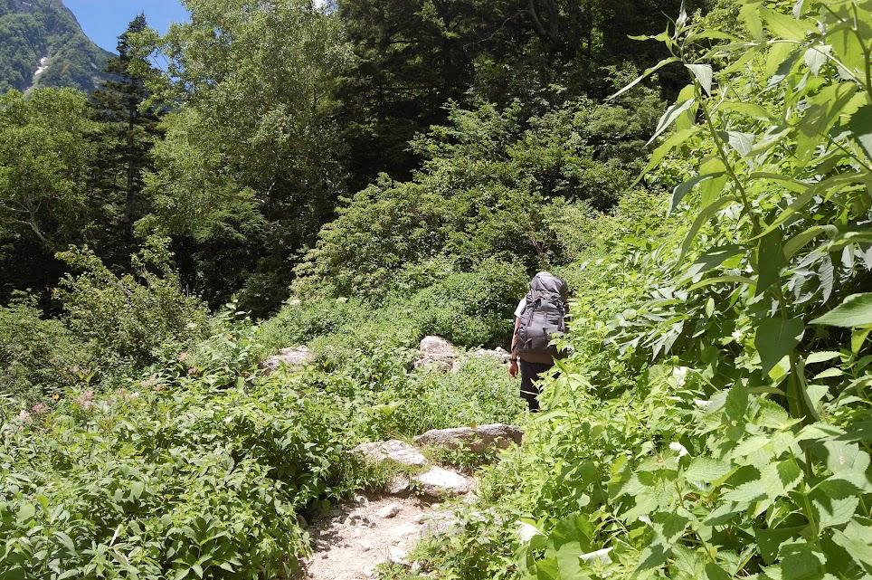 本谷橋手前の登山道