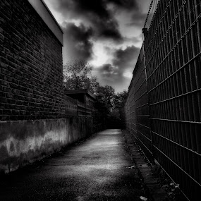 film noir by Ani Desu - City,  Street & Park  Neighborhoods