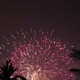 Fireworks by Nishtha Talreja - Abstract Fire & Fireworks ( light, design, pattern, fireworks, dubai,  )