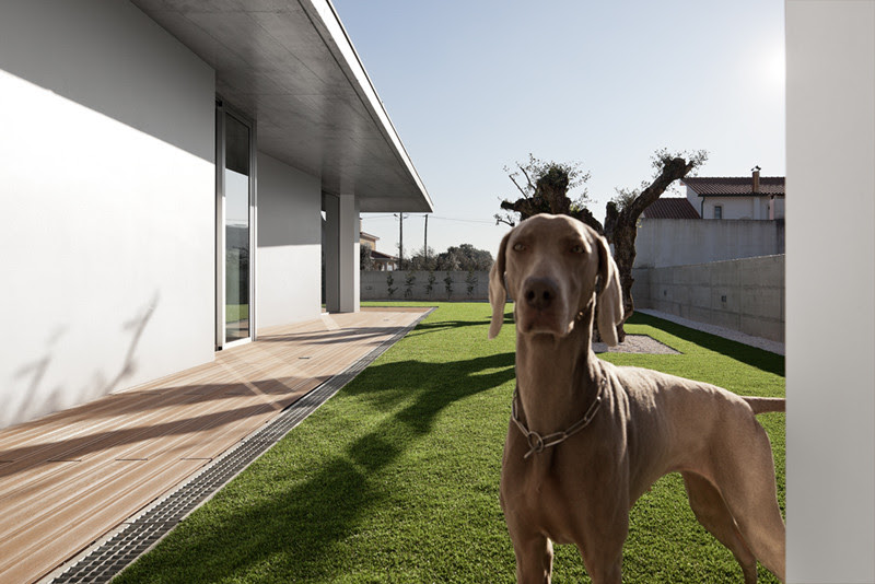 Casa Xieira II - A2 + Arquitectos
