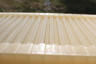 Photo: Flow hive frame foundation beekeeping review MahakoBees