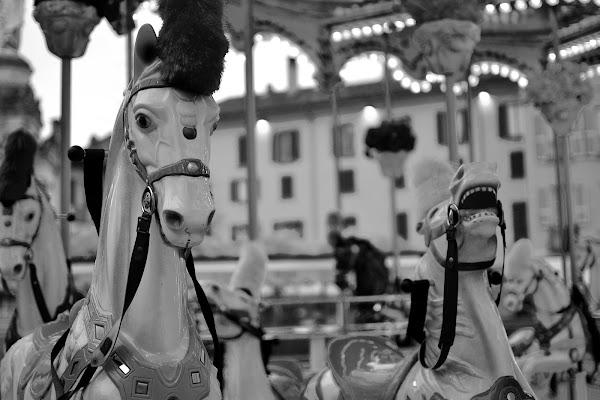giostra a cavallo di giampieropetrone