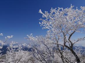 山頂の霧氷が一番か