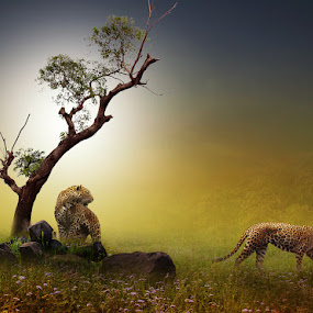 OK..YOU GO,WE ARE FINISHED by Zainal Arifin  - Digital Art Places