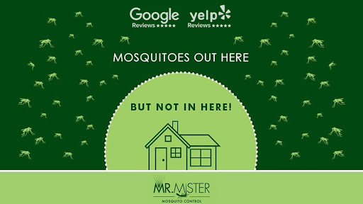 best mosquito control for yard