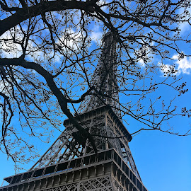 Tour Eiffel by Dobrin Anca - Instagram & Mobile iPhone ( paris, skyscraper, green, street, tour )