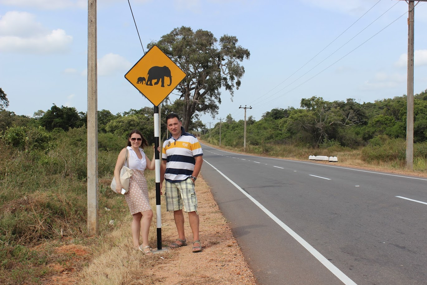 Знак осторожно слоны на Шри Ланке