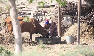 Photo: Day 161 - Farm in Village #2