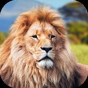 Animal King Lion Locker Theme