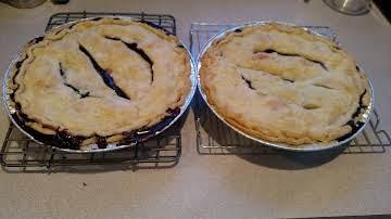 pie crust treatment