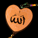 Daily Islamic Messages Quotes and Sayings ♥ icon