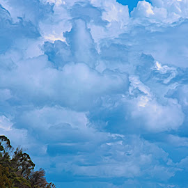 Shifting Clouds by Garry Dosa - Landscapes Cloud Formations ( pastel, outdoors, blue, ocean, waterscape, beach, impressionistic, clouds, autumn, water, landscape )