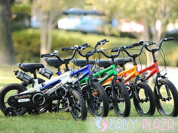 Xe đạp Royal Baby B-6 2