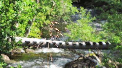 Photo: Skoterbro i sommarvila - Dolkabäcken