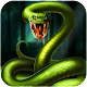 Angry Anaconda Attack. io (game)