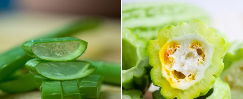This 2-Plant Mixture May Help Reverse Diabetes, According To Research