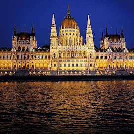 Hungarian Parliament, Budapest by Tina Stevens - Buildings & Architecture Public & Historical ( reflection, city, night, danube, parliament, dome, water, twilight, building, gothic revival, hungary, towers, renaissance revival, government, public, budapest, river, 19th century, lights, architecture,  )