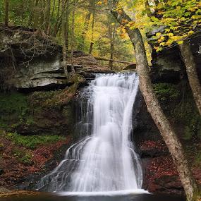 Sullivan Falls by Tim Devine - Landscapes Waterscapes ( sullivan falls, autumn, state game lands 13, waterfall, sullivan county, pennsylvania, sgl13 )