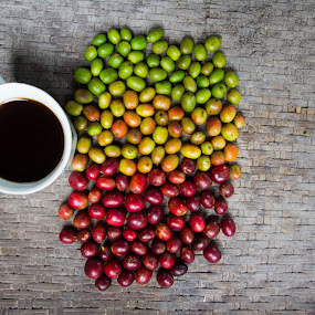 Coffee Gayo by Khairi Went - Food & Drink Fruits & Vegetables ( sweet, color, coffee beans, beans, primary color, coffee, coffee cup, nice,  )