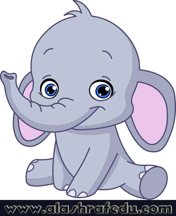 Baby Elephant CNxN6Cu159dfEuh3djjw