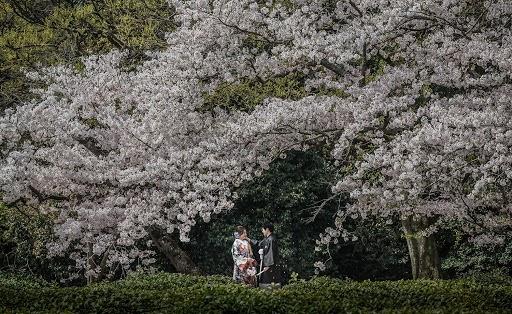 Svadobný fotograf Nagayuki Kojima (PhotoArtKOJIMA). Fotografia publikovaná 16.08.2018