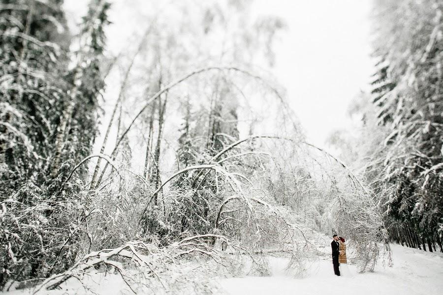 Wedding photographer Denis Isaev (Elisej). Photo of 27.11.2016