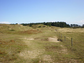 Photo: Norfolk Coast Path - From Brancaster to Warham - Pointing to Burrow Gap as a reference point