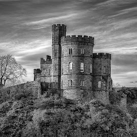 The Castle by Juan de Simone - Buildings & Architecture Public & Historical ( castle, tree, black and white, clouds, landscape,  )