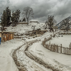 Swati Winters by Fateen Younis - Landscapes Weather ( hedge, leading lines, winter, snow, path, frost,  )