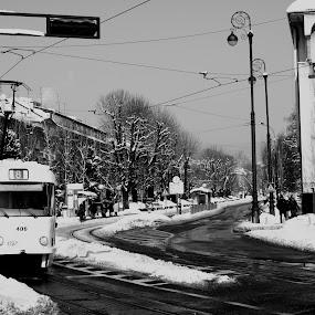 Winter in Zagreb by Filip Caric - City,  Street & Park  Street Scenes ( zagreb winter croatia hrvatska zet )