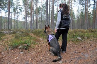 Photo: Tanja og Ulvehiets Barske Kahn er klare for rundering.