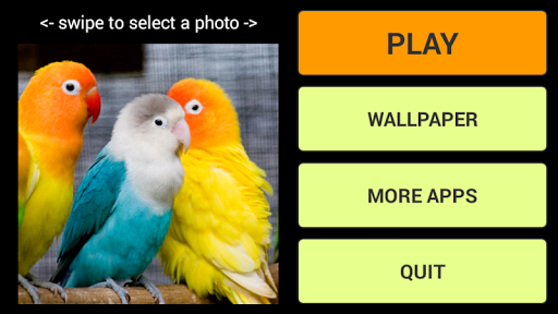 鳥ジグソーパズル+ LWP