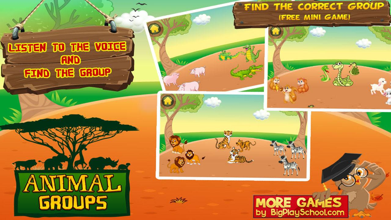 Animal Groups - Learn Animals- screenshot