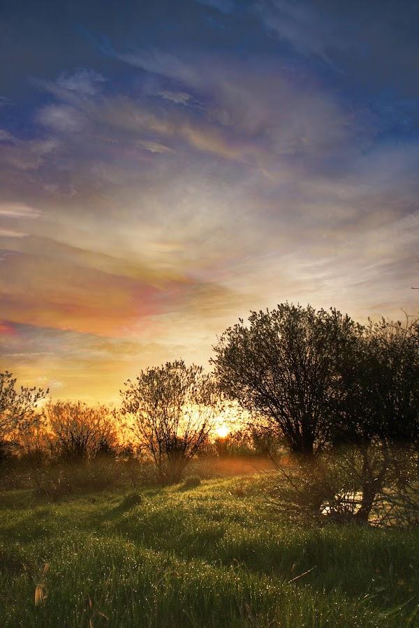 Sunrise Colors by Jonathan VerStrate - Landscapes Sunsets & Sunrises