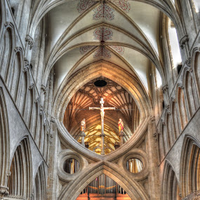 Cathedral Church of St. Andrew by Terry Niec - Buildings & Architecture Places of Worship ( wells, interior, wells cathedral, truss, cathedral, nave,  )
