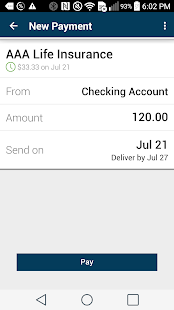 Online shopping pay with checking account