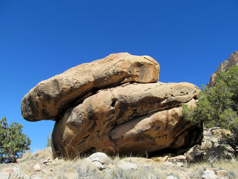 Photo: South face of boulder shelter