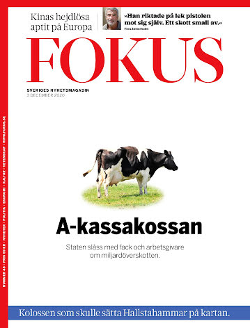 Fokus #48/20