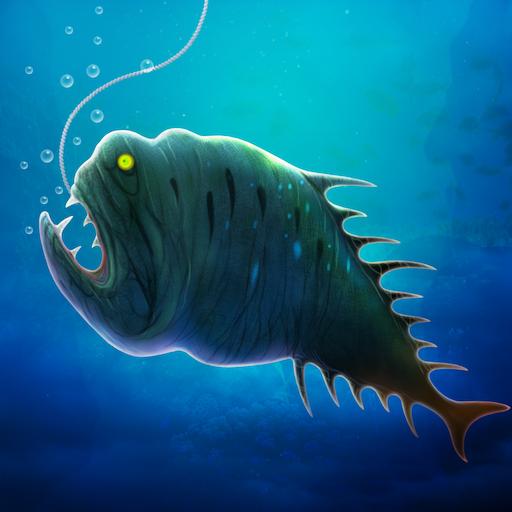 hal összekapcsolási hely