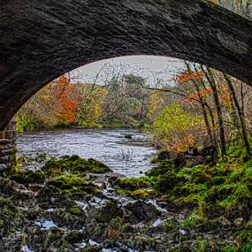 Glenairlie Bridge Thornhill Scotland by Andrew Lancaster - Buildings & Architecture Bridges & Suspended Structures ( seascape, rocks, beauty, nature, river, bridge, water, trees, flowing, landscape, scotland, stone,  )