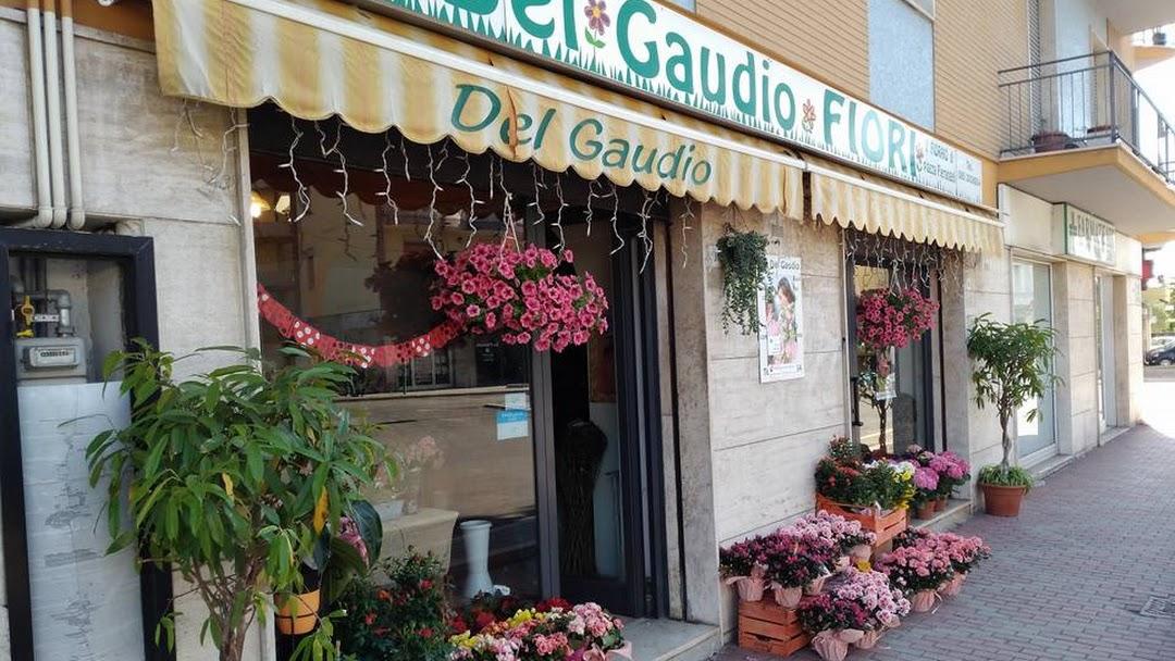 Del Gaudio Fiori - Fiorista a Pescara Fiori, piante e ...