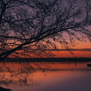 tree lake feb 2015_HDR_edit.jpg