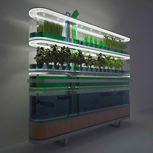 Aquaponic Farm Design