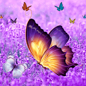 Lavender Diamond Butterfly
