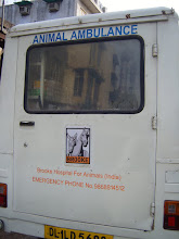 Photo: One of the Charity's mobile units