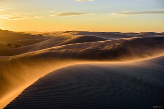 Photo: Another from the windy dunes set  #glamis   #dunes