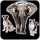Animal Sounds by Avar Apps APK